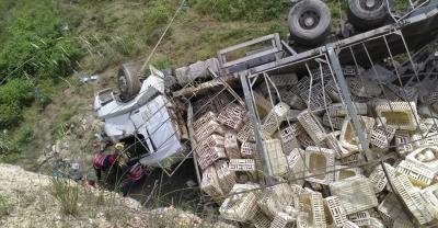 Tavuk yüklü kamyon devrildi: 1 ölü