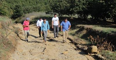Ferizli'de tarım arazilerinde inceleme